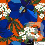 ZNOK Delphinium orange/blau