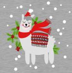 Sweat Franz feiert Weihnachten 1 Rapport