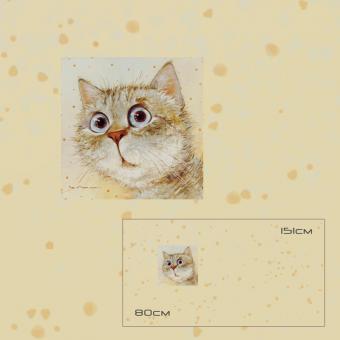 "Katze ""What Is It"" 1 Rapport"