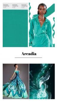 ZNOK Uni Arcadia
