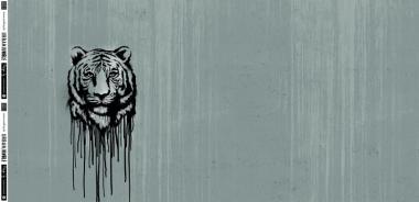 Rapport Wild Tiger by Thorsten Berger